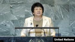 Kyrgyz President Roza Otunbaeva speaking at the UN.