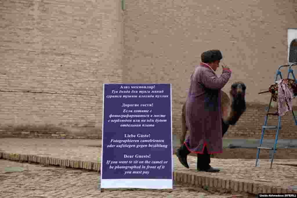"""Хивинский предприниматель, """"арендующий"""" верблюда у мужа Бибигуль, жительницы Компрессорного. Через этого человека удалось выйти на местных казахов."""