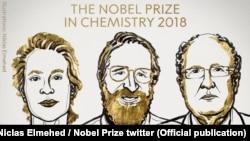 Відкриття вчених у Нобелівському комітеті назвали «революцією за допомогою еволюції»