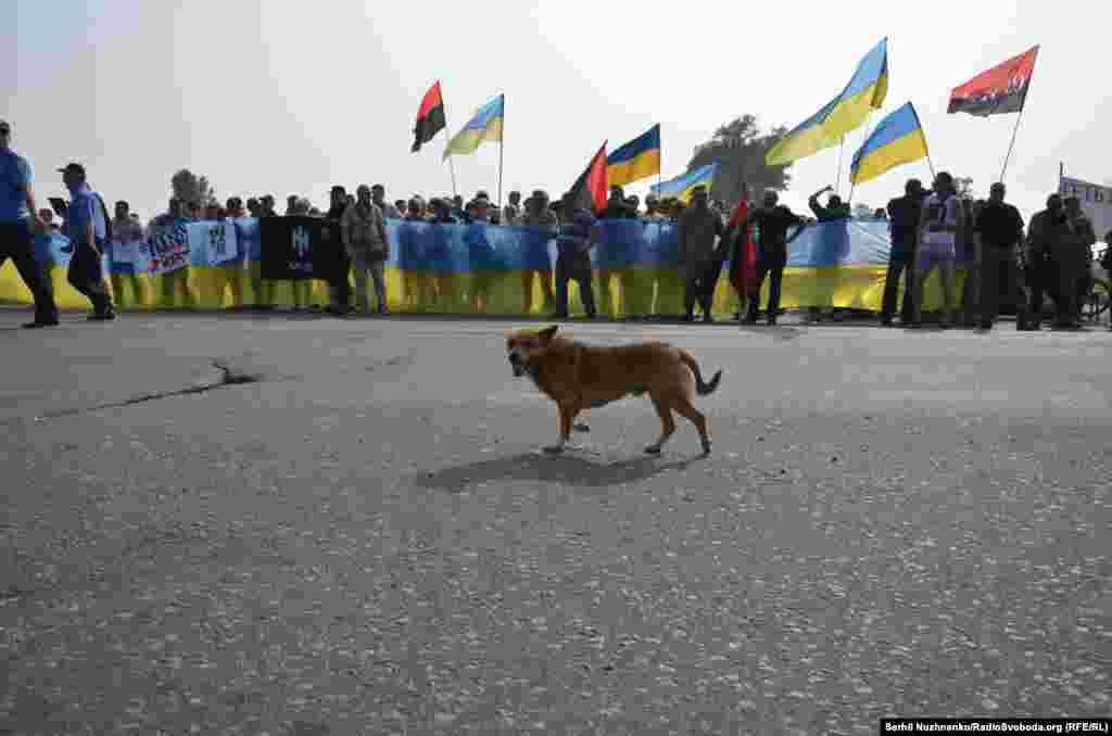 Активисты встречали крестный ход сине-желтыми и красно-черными флагами