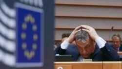 ИА аз иқдоми Орбан интиқод кард