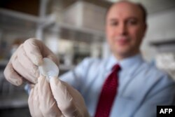 Larry Bonassar of Cornell University holds a fabricated ear printed with a 3D printer in his lab.