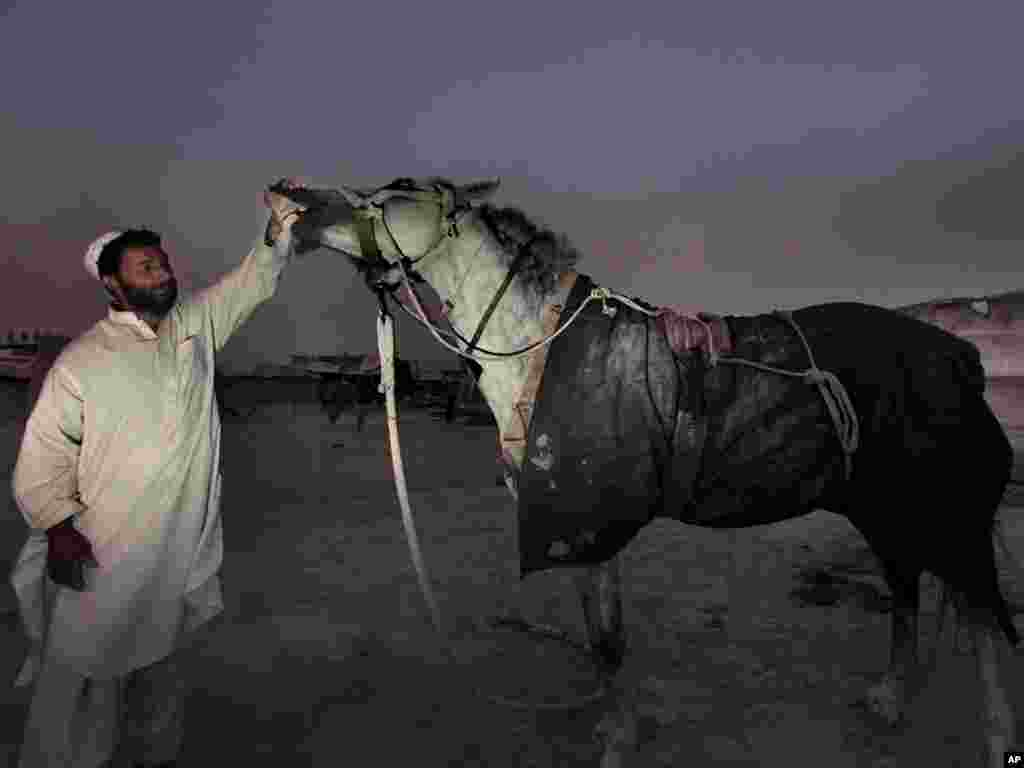 Thorab Ahmed tends to his horse after a day's work outside his house in Kabul, Afghanistan on July 19.Photo by Dar Yasin for AP