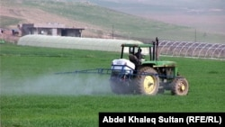 في احدى مزارع محافظة دهوك