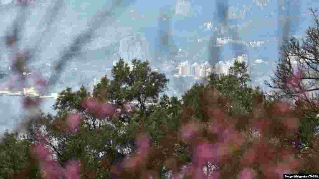 Краєвид на Ялту з Нікітського ботанічного саду