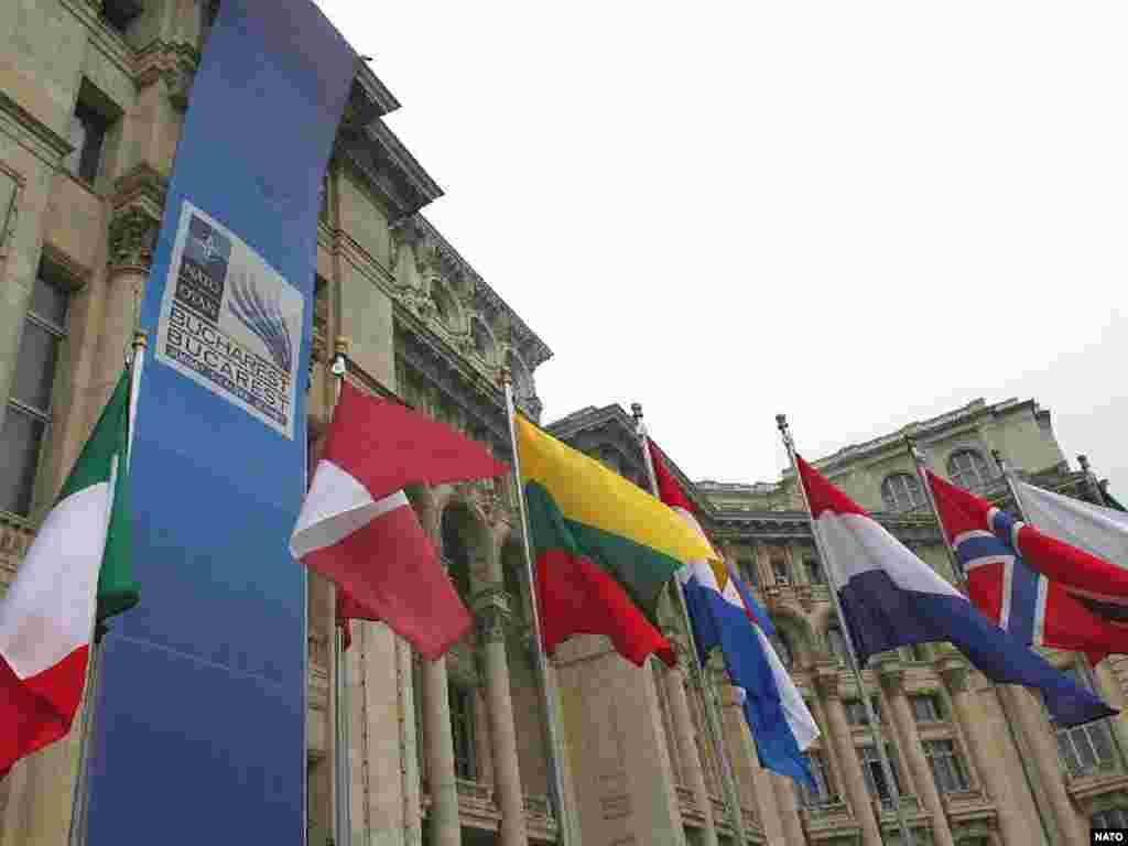Прапори НАТО перед Парламентським палацом в Бухаресті