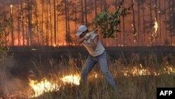 Огонь у деревни Долгинино в Рязанской области. Август 2010 года