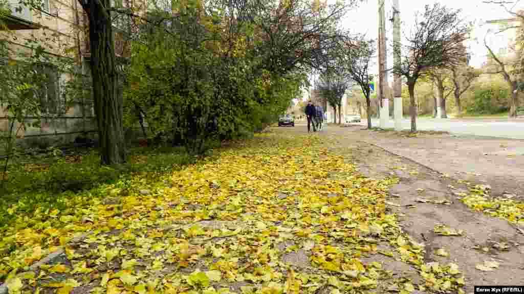 Тротуары желтеют опавшей листвой
