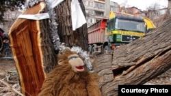 Բնապահպանների «ծառափրկիչ» ակցիան մանկապարտեզի տարածքի դեռ չհատված ծառերը փրկելու համար