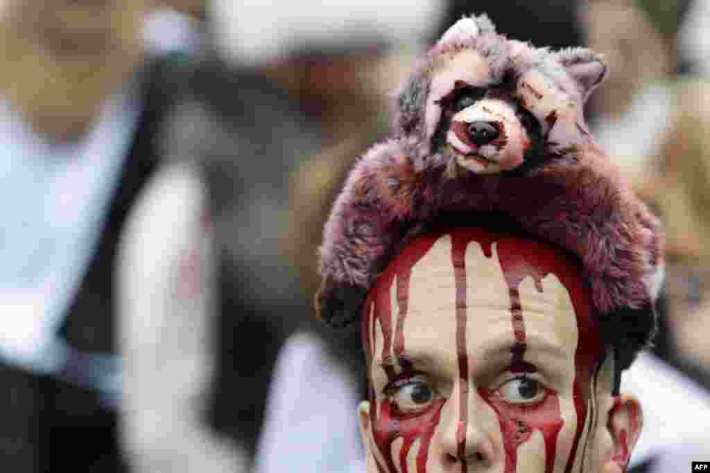 An activist covered in fake blood with a toy raccoon on his head protests on November 24 during an antifur demonstration in Paris. (AFP/Kenzo Tribouillard)