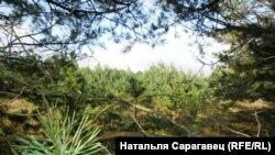 Любанскі р-н. г.п. Урэчча, Менская вобласць
