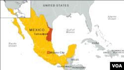 Мексиканың картасы. (Көрнекі сурет).