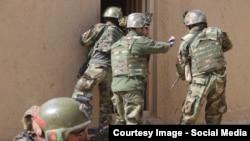 نېکلسن د افغان ځواکونو د هڅو ستاینه وکړه.