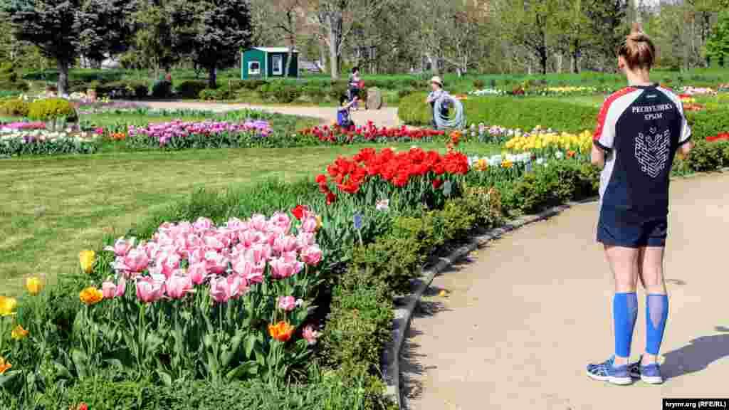 Головна прикраса ботсаду в цю пору року – різнокольорові тюльпани