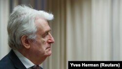 Former Bosnian Serb leader Radovan Karadzic in court in The Hague on April 24,