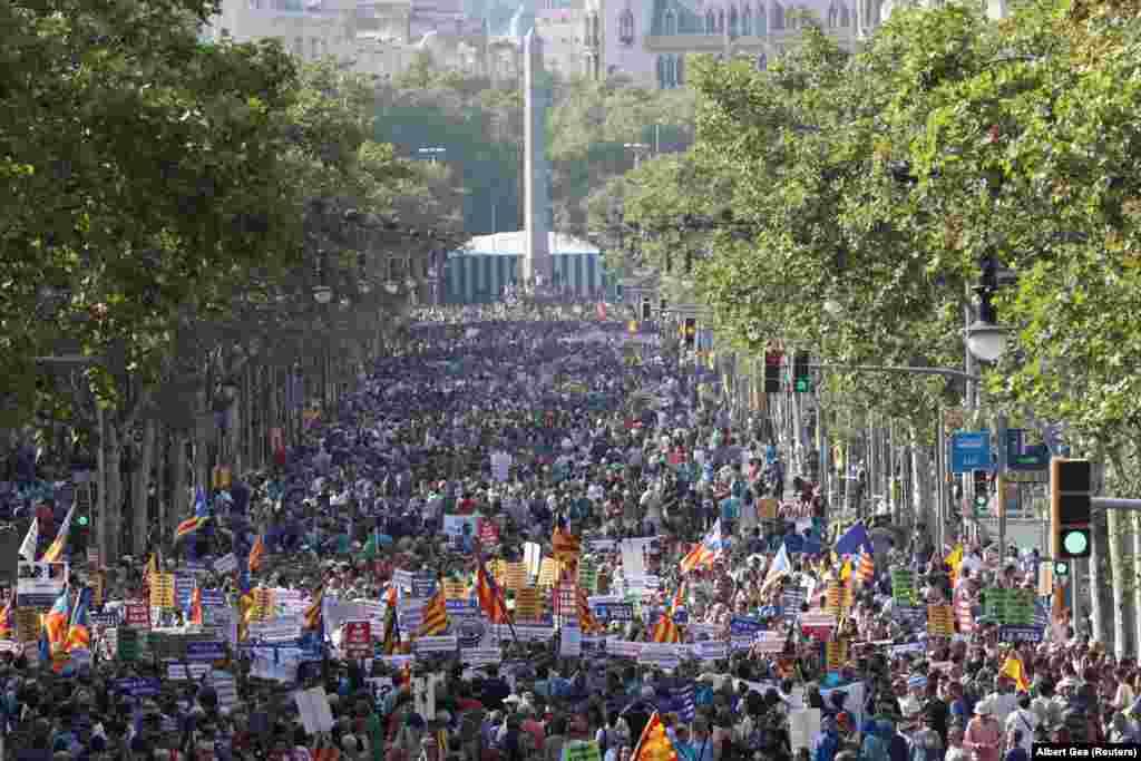 Паводле зьвестак паліцыі, у акцыі ўзялі ўдзел каля 500 тысяч чалавек.