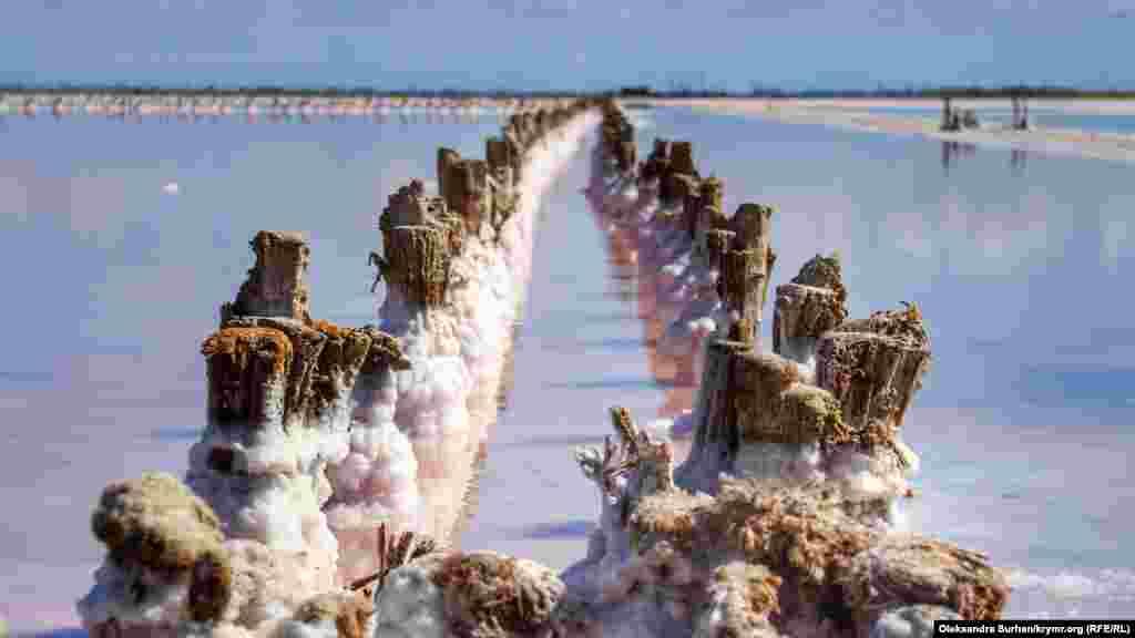 Сасык-Сиваш является природным источником запасов соли, здесь работает производство по ее добыче. Деревянными столбиками разграничены бассейны, в которых происходит добыча