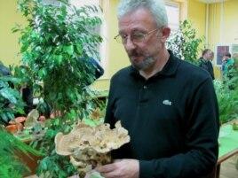 Nenad Milosavljević, Udrženje gljivara Šumadija, izložba u Kragujevcu, 16. oktobar 2011.