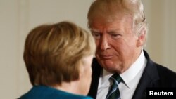 17 марта в Белом Доме состоялась встречапрезидентов США и Германии Трампа и Меркель