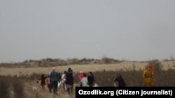 Özbəkistan, pambıq tarlası