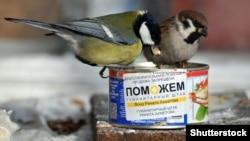 И этим птицам кое-что досталось с гуманитарной помощи Фонда Рината Ахметова. Донецкая область