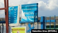 Bacul de la Molovata, mai 2020.