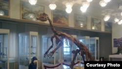Uzbekistan - dinosaur which is in the Geological museum of Tashkent,