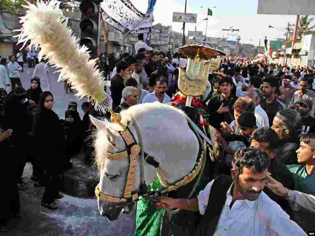 Pakistanis gather around a white horse symbolising Zuljinah, horse of the martyr Imam Hussein. - Shi'ite Muslims took part in the Chup Tazia procession in Karachi, Pakistan, on February 23, in which they end their 68 days of mourning. Photo by Rehan Khan for epa