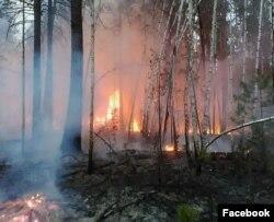 Пожары в Бурятии, 2017