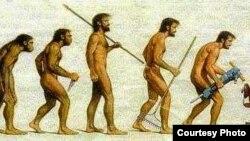 Taniqli olim Charlz Darvinning evolyutsiya nazariyasiga chizilgan karikatura.