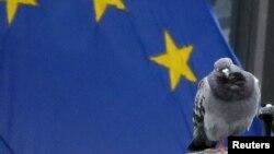 Европа берлеге әләме сурәтендә күгәрчен