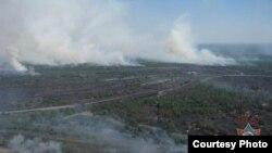 Лясны пажар на Гомельшчыне, 14 чэрвеня 2015 году