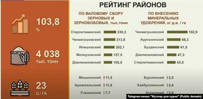 """Из Telegram-каналa """"Футляр для курая"""""""