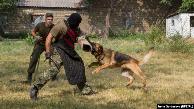 Ukrainian police put a German Shepherd through its paces at a new dog-training center that has been opened in the eastern port city of Mariupol.
