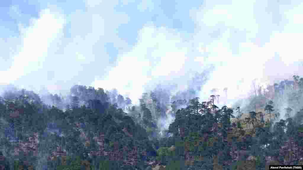 В связи со сложной доступностью эпицентра пожара технику расставили в 100-150 метрах от него, а для борьбы с огнем развернули рукавные линии, задействовали ранцевые огнетушители и шанцевый инструмент