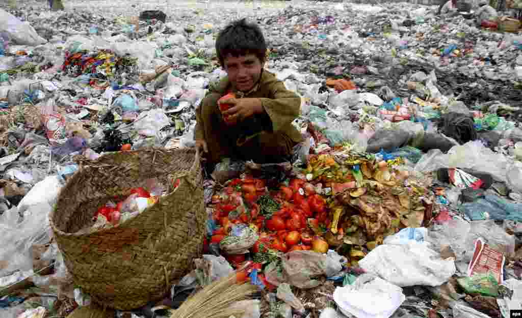 A Pakistani boy collects items from garbage dumps on a roadside in Karachi. According to Pakistan's Human Development Index, over 60 percent of Pakistan's population lives on less than $1 a day. (epa/Shahzaib Akber)