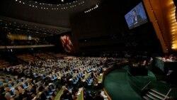 Время Свободы: Дело дошло до ООН