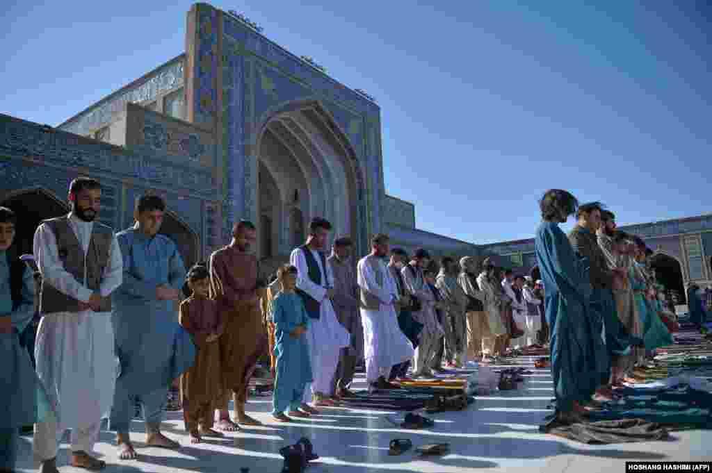 Афганские мусульмане совершают праздничную молитву в Герате