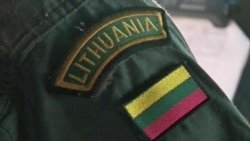 Восточная Европа зовет к себе НАТО