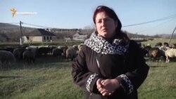 Business woman în Moldova