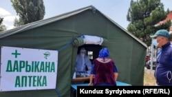 Полевая аптека в Иссык-Кульской области. Иллюстративное фото.