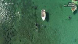 Najveća školjka Mediterana pred izumiranjem