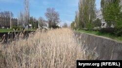 Река Мелек-Чесме, Керчь, май 2021 года