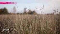 """""""Настоящее Время"""" ЭФИР - 27 июля"""