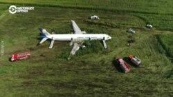 Самолет «Уральских авиалиний» сел на кукурузное поле, кадры с дрона