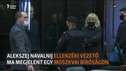 Alekszej Navalnij a bíróságon