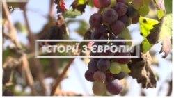 Кіпр: самогон в законі – відео