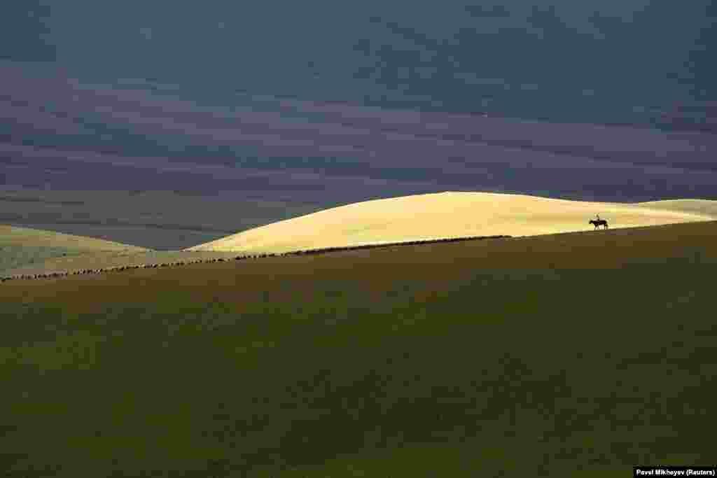 Пастух їде на коні гірським платом Аси, що на сході від міста Алмати, Казахстан