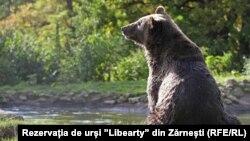 Rezervat 'Liberty' u Rumuniji