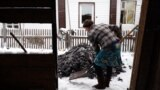 Siberia grab 3